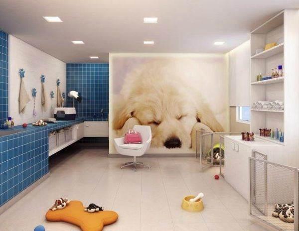 宠物医院功能区如何设计